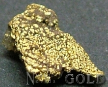 Specimen Gold 2400Tsk