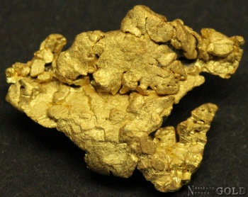 gold_nugget_4112