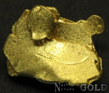 gold_nugget_4115