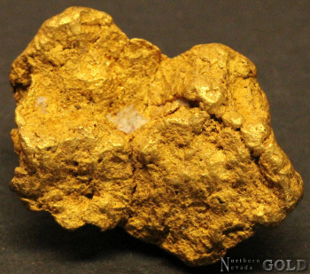 gold_nugget_4385rc-c