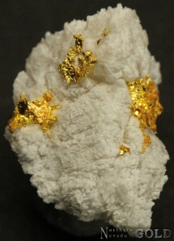 specimen_gold_4059ml-b