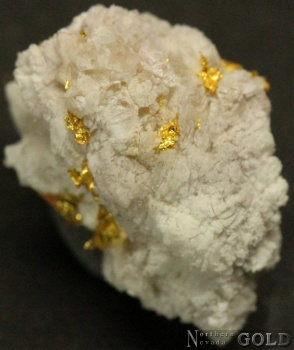 specimen_gold_4059ml-c