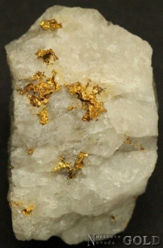 specimen_gold_4085ml-c