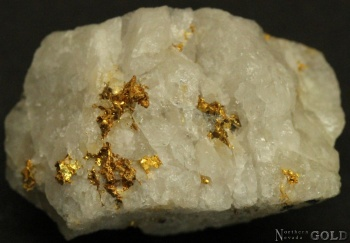 specimen_gold_4085ml