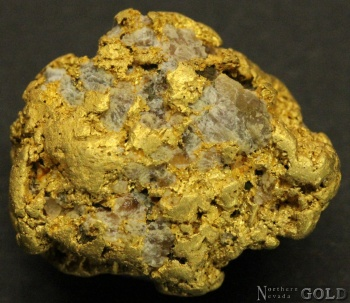 specimen_goldt_4025mr-b