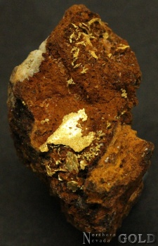 specimen_goldt_4043tm-b