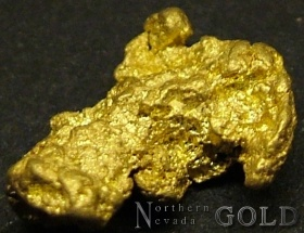 Gold Nugget 2856RC